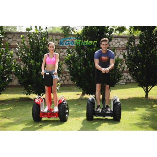 Off Road Segway Golf Roller E8-2 Scooter Hoverboard Best Preis